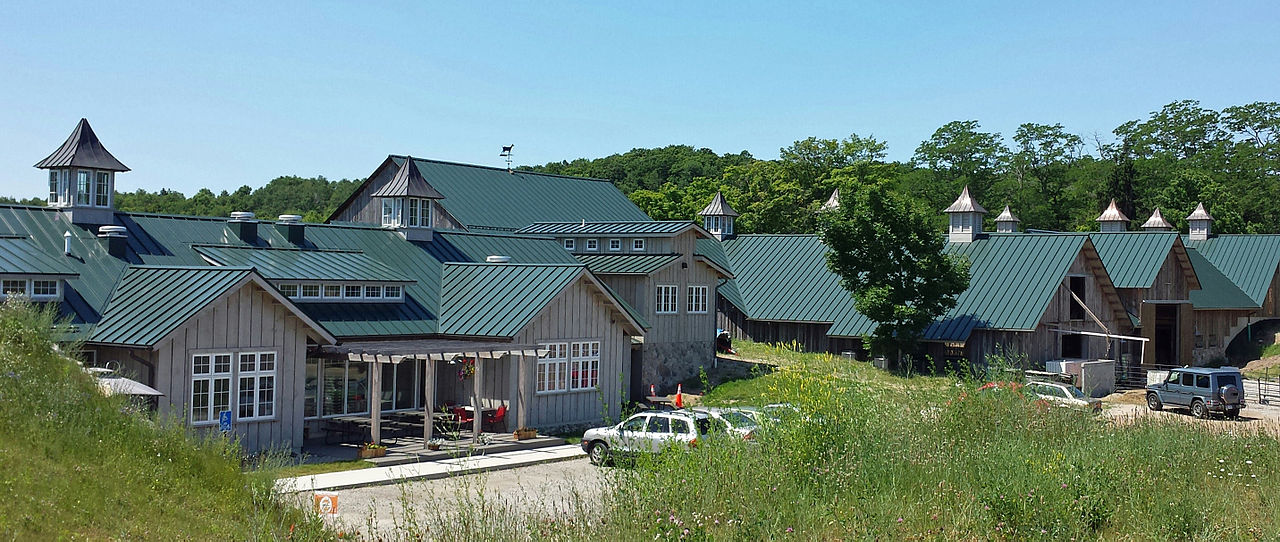 A beautiful summer day at Idyll Goat and Dairy Farms in Northport, Michigan on the Leelanau Peninsula.